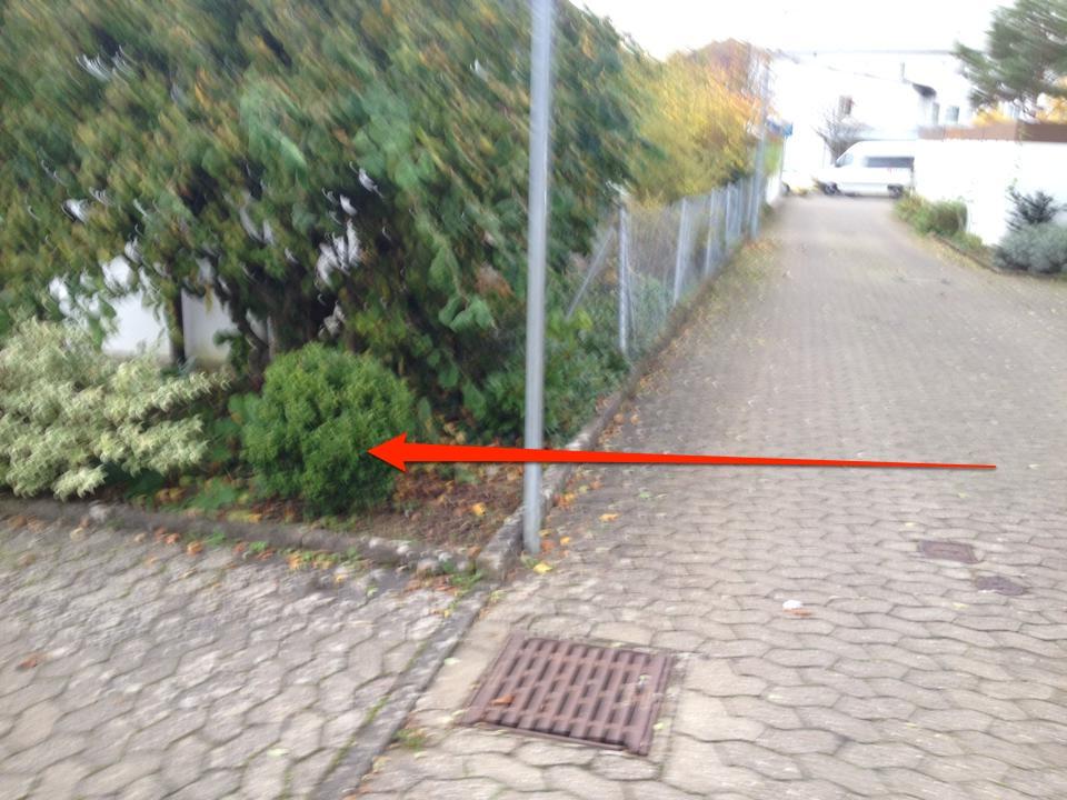 longboardstrecke schweinfurt 5