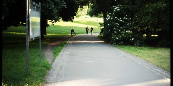 longboard-strecke-volkspark-friedrichshain-berlin-1