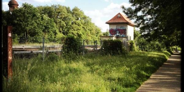 longboard-strecke-berlin-priesterweg-10