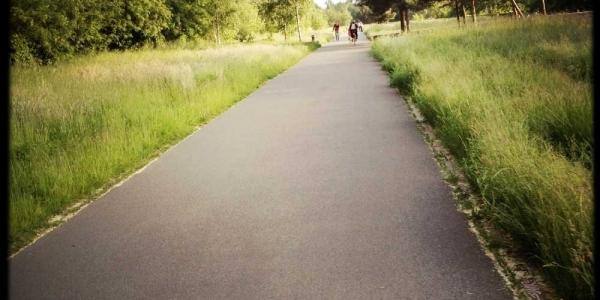 longboard-strecke-berlin-priesterweg-2