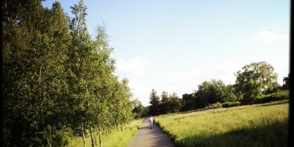longboard-strecke-berlin-priesterweg-5