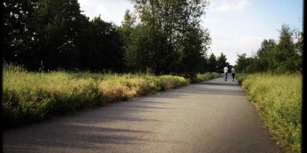 longboard-strecke-berlin-priesterweg-7